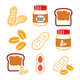 Peanuts, peanut butter - food vector icons set