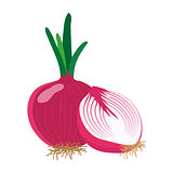 Red onion with slice flat design, vector illustration.