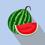 watermelons and slices isolated, vector illustration.
