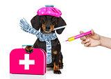 ill sick dog with illness and vaccine syringe