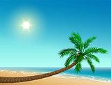 Paradise tropical beach. Inclined palm tree, clear sky, sun, sea and sand
