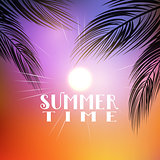 Summer palm tree background