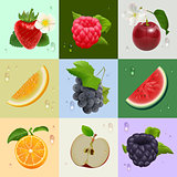 Set of ripe fruits strawberry, raspberry, cherry, melon, watermelon, apple, orange, grapes, blackberries