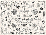 Vector floral doodles