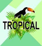 Geometric tropical background.