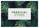 Dark vector tropical typography design with green jungle palm leaves.