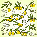 olive brances set