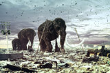 The family of mammoths