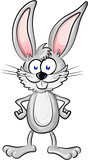 a fan rabbit  cartoon