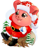 Pig in santa costume