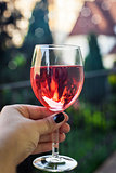 Glass of rose wine in woman hand