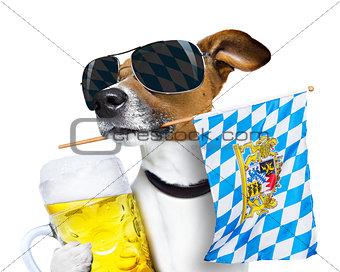 bavarian beer dog festival