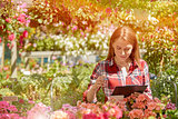 Woman working with garden flowers