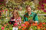Gardeners doing paperwork