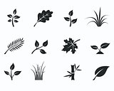 Black monochrome floral icon set