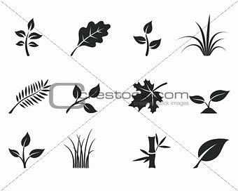Black monochrome floral icon set