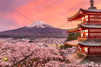 Mt. Fuji and Pagoda in Spring