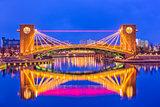Toyama Japan Bridge