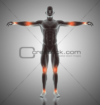 3D male figure with joints highlighted