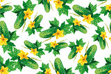 Cucumber seamless pattern on white , vector