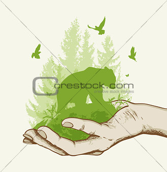 Green tree and bear in the hand
