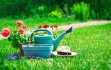 Home gardening and flower-growing still-life of flower