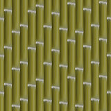 Seamless background of bamboo stalks, vector illustration.