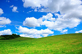Field with green grass and blue sky with clouds.