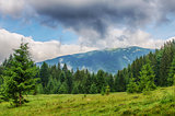 The landscape on the Carpathian Mountains in Ukraine