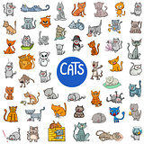 cartoon cat characters large set