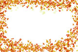 Festive bright frame of autumn leaves and transparent petal framing with white base