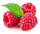 Raspberry berries with green leaf healthy food