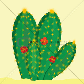 Green cactus with flowers on yellow background