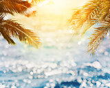 Tropical beach with coconut tree on sunset