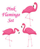 Pink flamingo set of objects. Isolated on white background. Vector illustration.