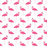 Pink flamingo seamless pattern. Summer tropical endless background, repeating texture. Vector illustration.