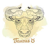 Hand drawn line art of decorative zodiac sign Taurus.
