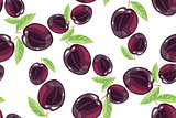 Plum fruits sketch drawing seamless pattern