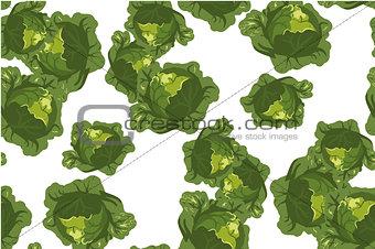 Cabbage seamless pattern on white