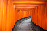 Tunnel of red Torii gates at Fushimi, Japan