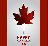 Canada flag the national day of Canada