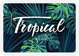 Dark tropical card design with jungle plants and lettering. Vector tropical background with green sabal palm and monstera leaves.
