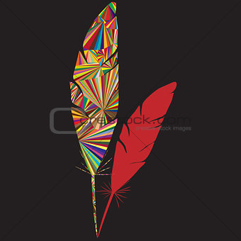 Abstract colored feather logo