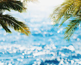Tropical beach with coconut tree and bright sea