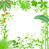 Background with green plants and flowers illustration