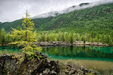 Siberia. Beautiful green fog lake in the forest. Buryatia
