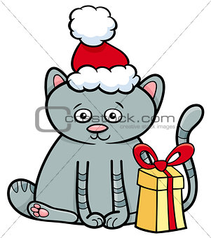 kitten with gift on Christmas time