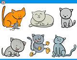 cartoon cat characters set