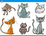 cat characters set