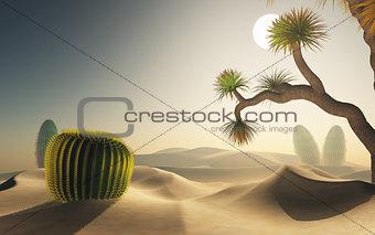 3D desert scene
